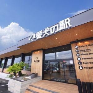 食べて、遊んで、お買い物して。静岡・伊東「愛犬の駅」で過ごす濃密な時間