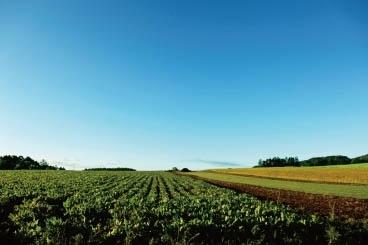 北海道の野菜を食べよう~なぜ北海道の野菜は美味しいの?~