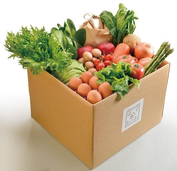 北海道の野菜を食べよう~旬の厳選野菜セットと定期便がおすすめ~