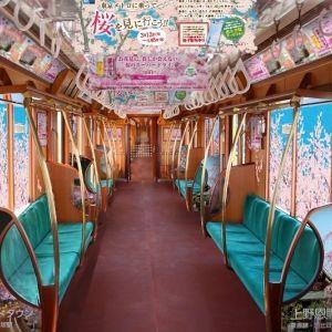 東京メトロに乗って桜を見に行こう!「桜トレイン」が運行開始