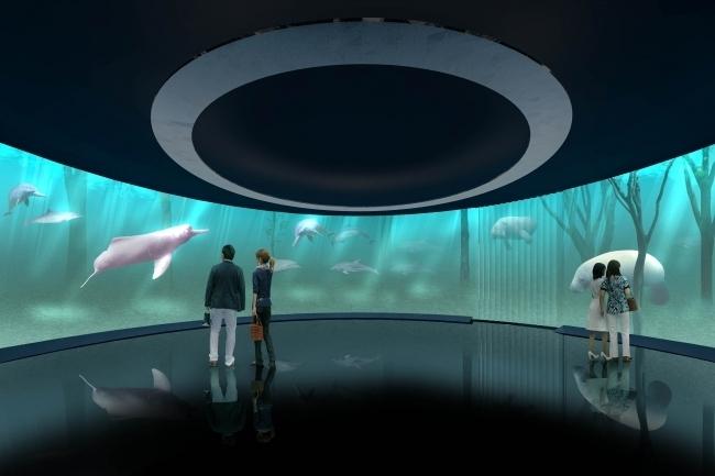360°円形スクリーンで体感する感動的な映像体験
