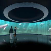 川崎駅前に誕生する水族館「カワスイ 川崎水族館」7月にオープン!