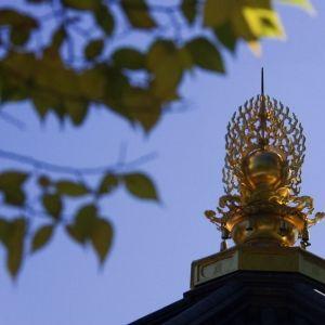 来年こそ初詣にいこう。「成田山新勝寺」の混雑しにくい時間帯は?その0