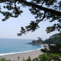 坂本龍馬の生誕の地!見どころいっぱい四国・高知県の歴史スポット