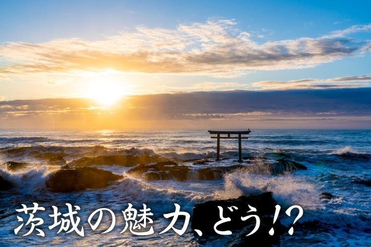 開運スポット②:茨城・大洗磯前(おおあらいいそさき)神社へ行く「魅力度最下位から脱出! 茨城を味わう冬の女子旅」