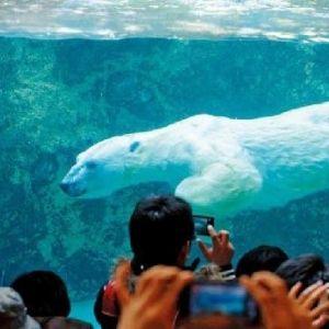 夏の北海道で遊びつくす!旭川・富良野・空知のおすすめ観光スポット4選