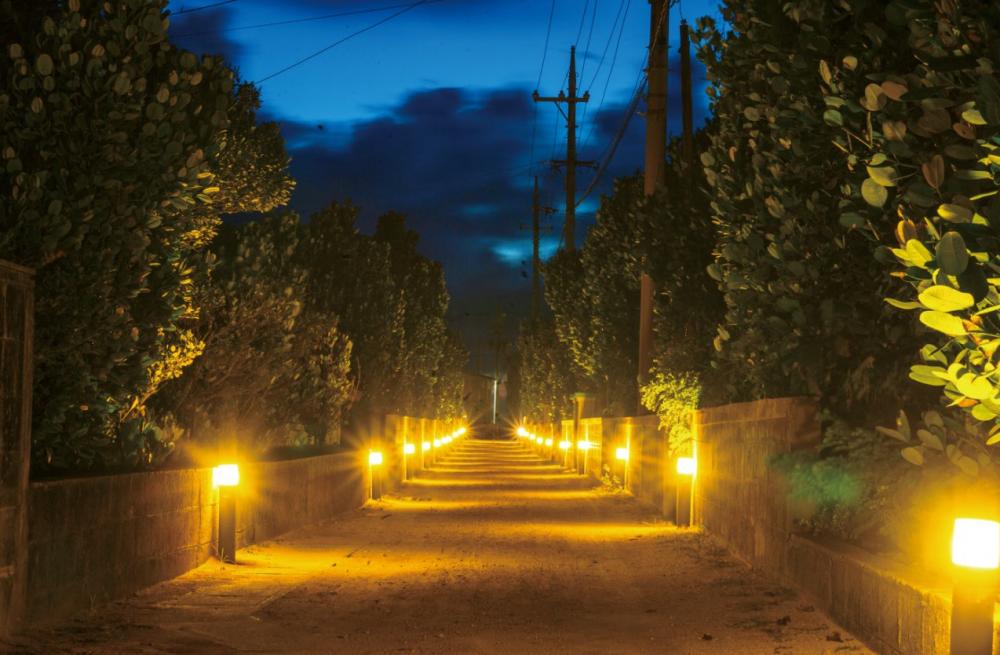 沖縄県の離島「渡名喜島」の魅力④幻想的な夜