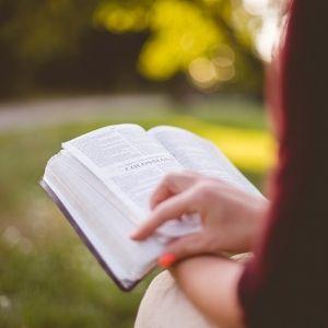一人旅こそ本を読もう!一度は試してほしい旅先読書のメリットとは