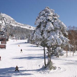 スキー場に迷ったらここへ!北海道の「ルスツリゾート」本日オープン