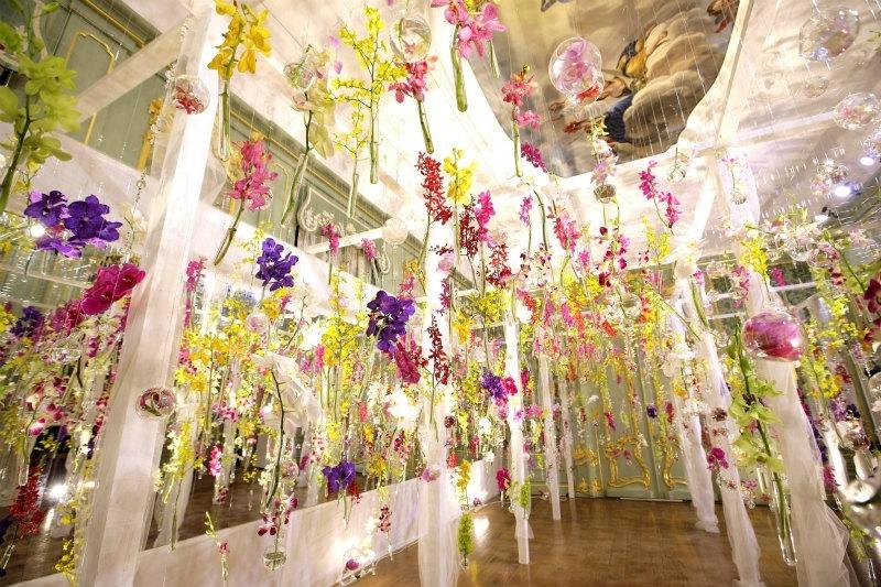 1月からは「青い胡蝶蘭の滝」と幻の蘭が登場!ハウステンボスで「大胡蝶蘭展」が開催中その4