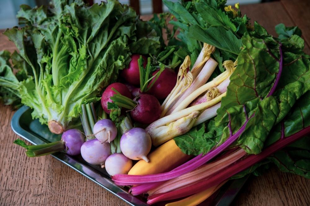 新鮮な国分寺野菜をふんだんに使用したメニューを用意