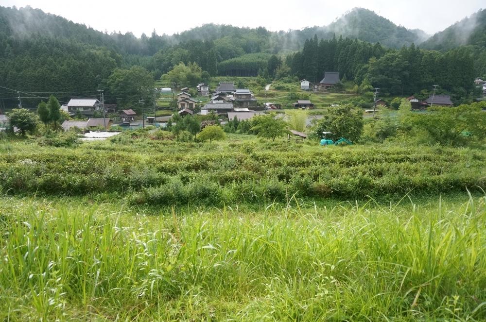 【日本ならいごとの旅 第3回】もうひとつの京都、北山杉の里京北で学ぶ精油と石けん作りその2