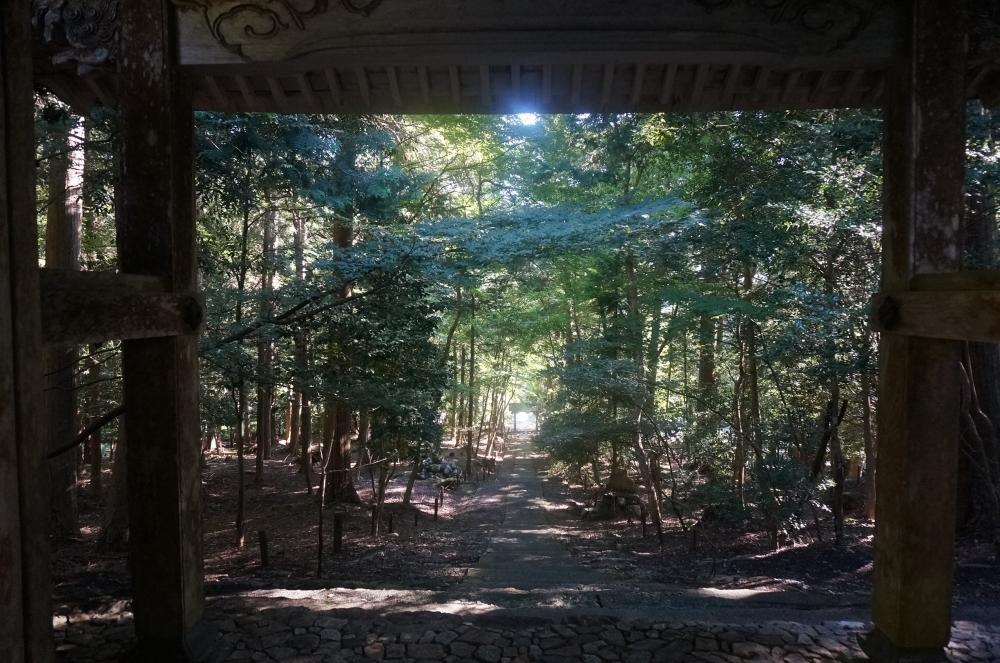 【日本ならいごとの旅 第3回】もうひとつの京都、北山杉の里京北で学ぶ精油と石けん作りその3