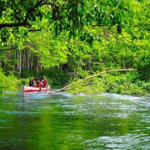 カヌーを体験するなら絶対ココ!北海道の自然を満喫「釧路川」観光♪
