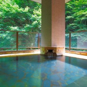 大自然を感じながらの最高の湯浴みと会席料理。創業600年を誇る老舗宿のこだわりとはその0