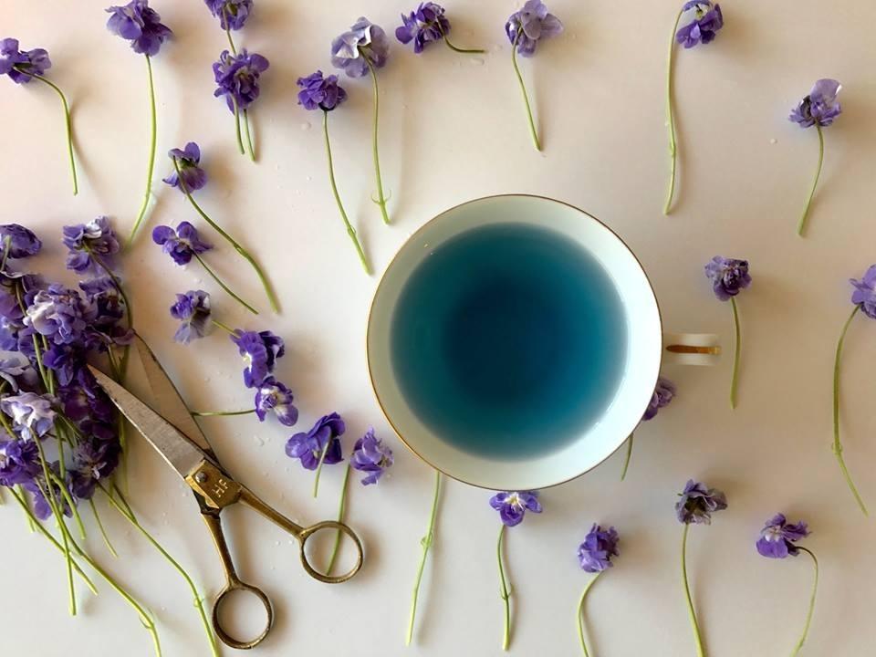うっとりする程美しい、青い緑茶