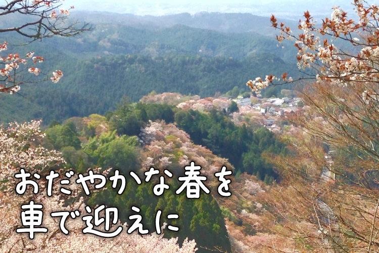 【奈良】歴史上の人物も拝んだ桜の名所「吉野山の桜にうっとり 日本文化を感じる夫婦旅」