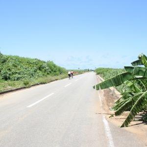 風と自然を感じる場所に行こう。国内おすすめのサイクリングスポット4選