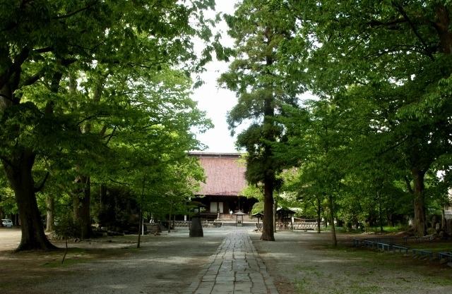 峯田和伸、橋本マナミが冬の山形で心温まる大人の純愛。「越年 Lovers」ロケ地巡りの旅へその2