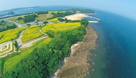 国東半島の大自然を感じるリゾート「長崎鼻」