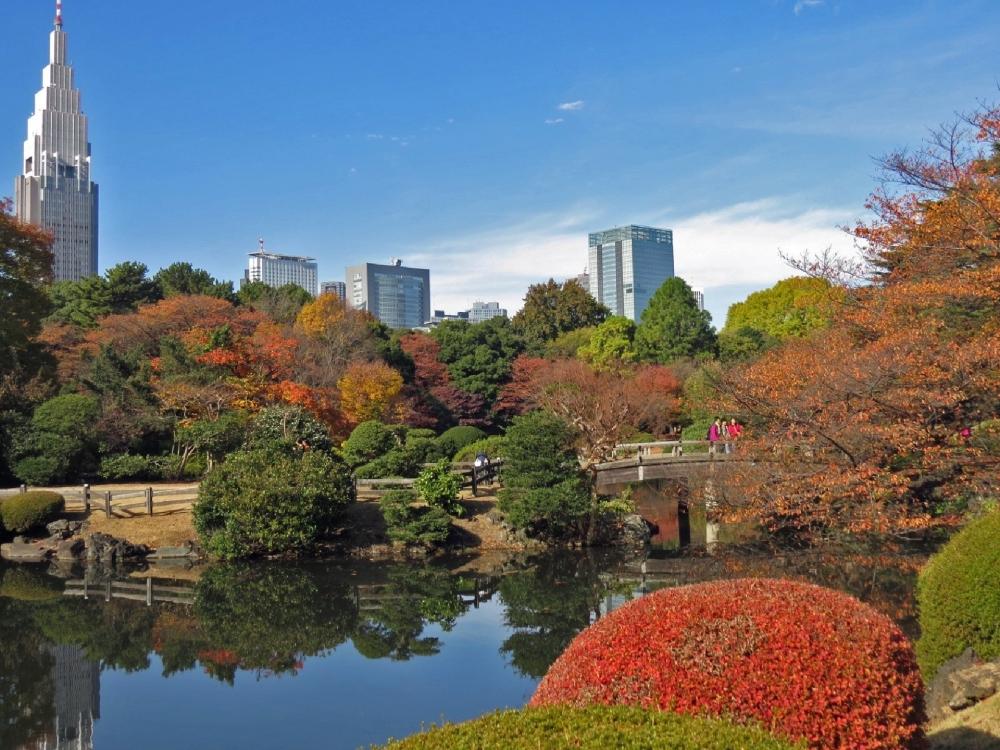 海外からの人気が高まる都会のオアシス「新宿御苑」