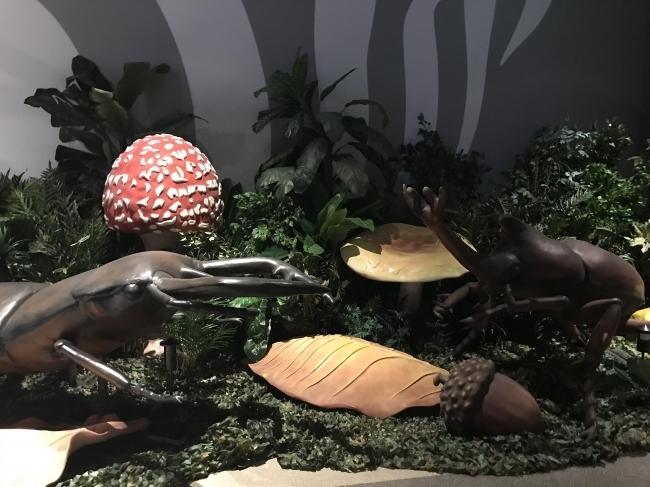 変身!昆虫スゴわざ展2019@マークイズみなとみらい5F(横浜・みなとみらい)