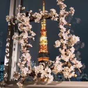 バスタイムにお花見できる贅沢ステイ! 「ザ・プリンスパークタワー東京」