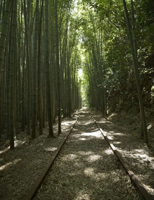 小倉優子さんが都会を離れ自然を満喫! 鳥取県倉吉市でリフレッシュ旅その4