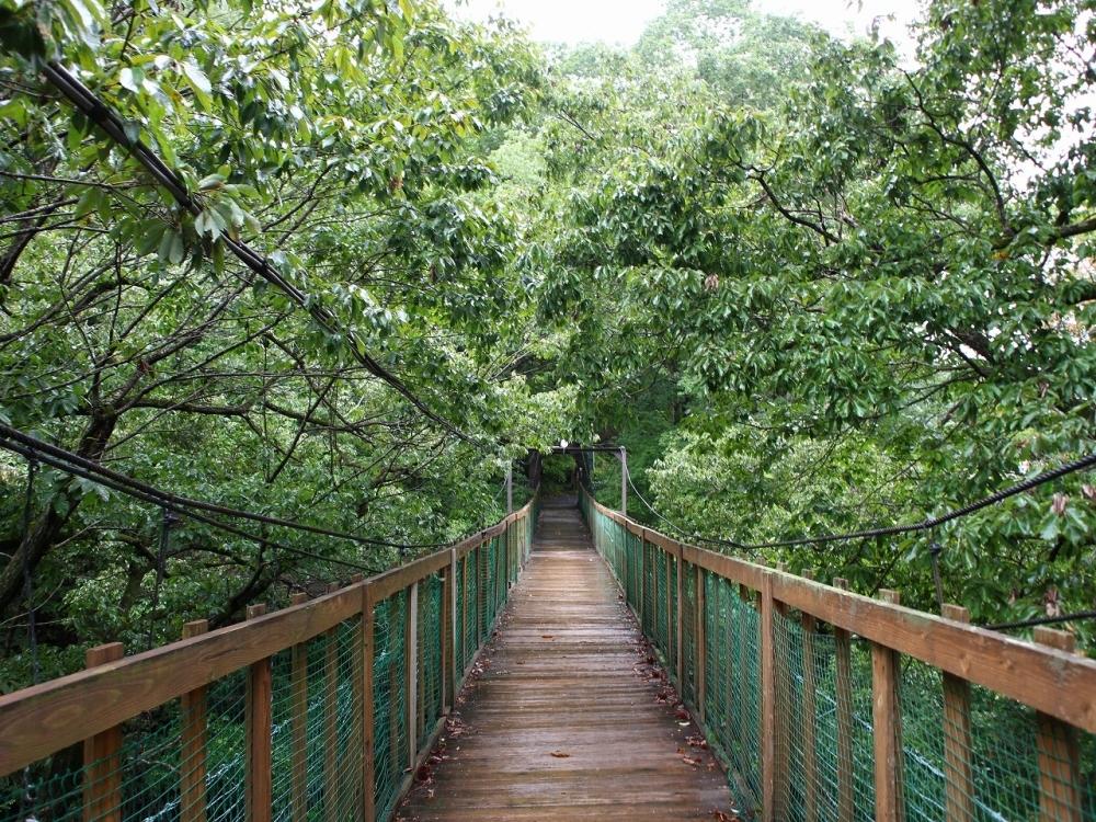 内緒にしたい吊り橋の先の秘湯「信夫温泉のんびり館」(福島)