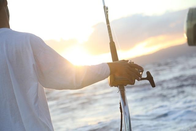 釣り体験が人気のワケ