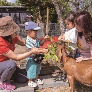 【台湾情報】屋外レジャーが選りどりみどり!キッズ・ファーストな民宿が墾丁にオープン。