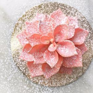 3月29日にドミニクアンセルベーカリー銀座2号店がオープン。目玉は空飛ぶケーキ!?