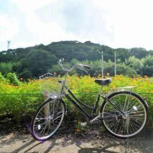 ご近所に自転車旅へ! 女子プロロードレーサーに聞く、自転車プチトリップのすすめその0