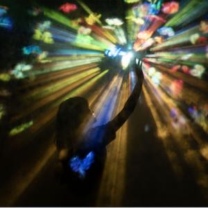 【東京】TikTok×チームラボが創るアートとサウナの展覧会が期間限定でオープンその0