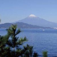 富士山と美景と美食の旅。静岡・焼津で体験したい4つのこと