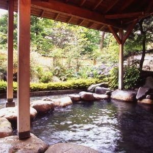美肌の湯に浸かって、極上エステでリラックス。「バーデン家 壮鳳」の魅力