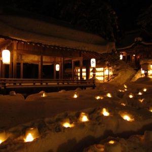 交流型イベントが満載。自然の美しさに触れられる「森の京都博」とは?