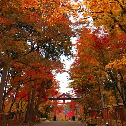 比叡山坂本エリアを巡る散歩コース
