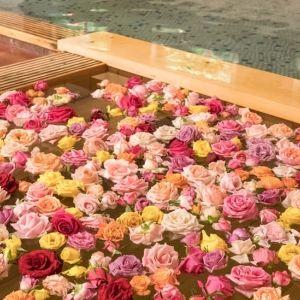 恋人の聖地サテライト、デートなら花巻温泉に決まりその0