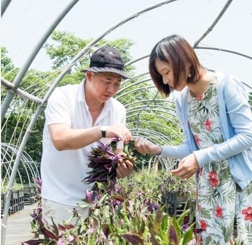 【台湾情報】台湾最大の露天風呂を擁するリゾートホテルで農業体験!自然の恵みに癒される滞在をその2