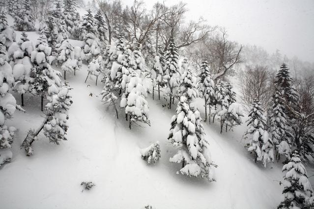 「草津国際スキー場」とは?