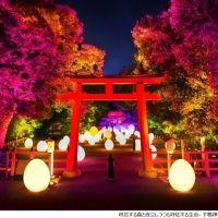 ロマンチックな夏の夜を…プロジェクションマッピング3選