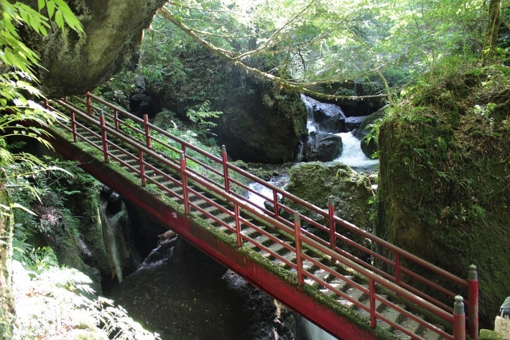 プログラムの一部を紹介!大岩山日石寺で森林セラピー体験