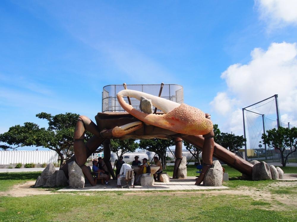 那覇空港近くの瀬長島にカニが出現。(豊見城市)