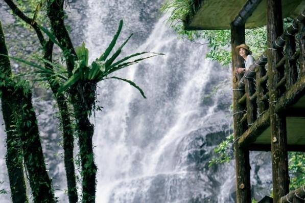 【台湾情報】夏の森林には天然のクーラーあり。滝を望む遊樂區で、清涼感あふれる休日をその3