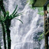 【台湾情報】夏の森林には天然のクーラーあり。滝を望む遊樂區で、清涼感あふれる休日を