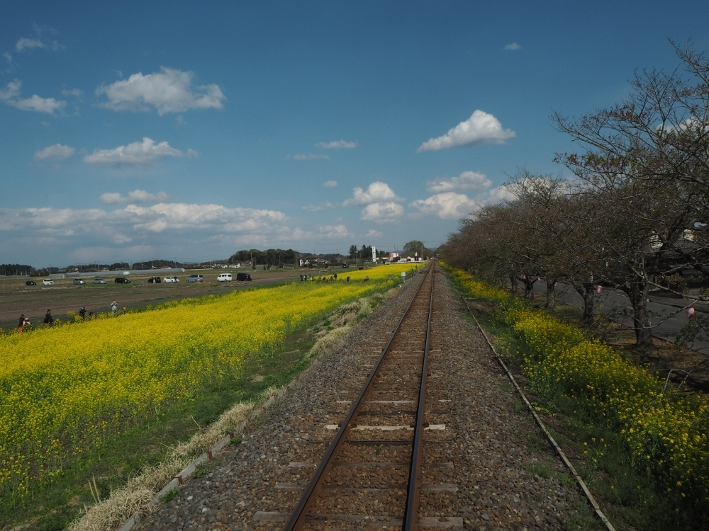 窓を開けて沿線の絶景と春の風を満喫