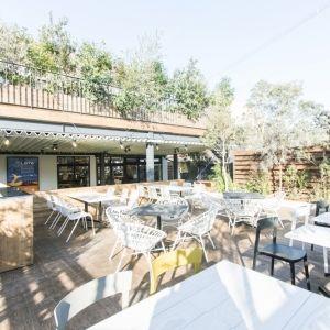 都会のオアシス! 豊かな緑を望む大阪のレストラン&カフェ3選
