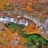 【旅色コンシェルジュが提案】<2020>全国の紅葉スポット 温泉、グルメ、ハイキングも楽しめる旅4選