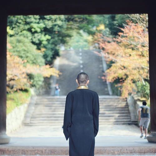 トリビア情報も発信。「そうだ 京都、行こう。」公式インスタグラムがスタートその3